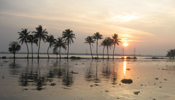 cochin backwaters 1