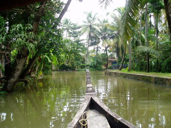 cochin backwaters 3